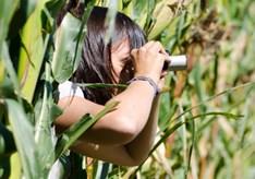Agrarische_spionage_steeds_groter_risico.jpg